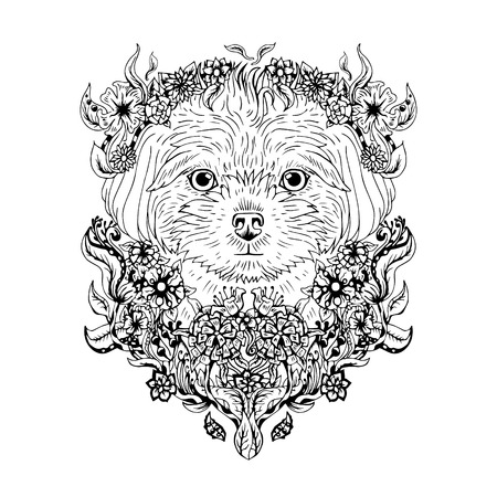 maltese dog: Black and white animal Dog head, abstract art, tattoo, doodle cketch. Dog breed Maltese. Outlines of pet. Design for t-shirt, bag, jacket, package, phone case and so on. Vector illustration. Illustration