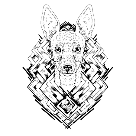 head phone: Black and white animal Dog head, abstract art, tattoo, doodle cketch. Dog breed Toy fox terrier. Outlines of pet. Design for t-shirt, bag, jacket, package, phone case and so on. Vector illustration. Illustration