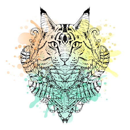 tomcat: Black and white animal Cat head, watercolor abstract art, tattoo, doodle sketch. Mancoon cat. Outlines of pet. Design for t-shirt, bag, jacket, package, phone case and so on. Vector illustration. Illustration