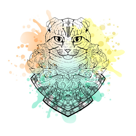 tomcat: Black and white animal Cat head, watercolor abstract art, tattoo, doodle sketch. Scottish fold cat. Design for t-shirt, bag, jacket, package, phone case and so on. Vector illustration.
