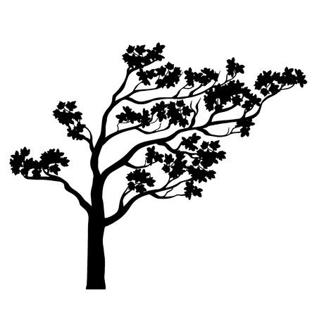 트리 사쿠라 실루엣입니다. 검은 색과 흰색 격리 된 개요. 봄 디자인을위한 꽃 나무. 양식에 일치시키는 중국 벚꽃 그리기. 문신 디자인. 벡터 일러스트