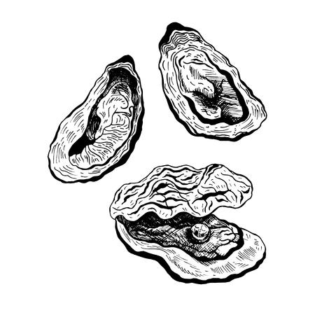 Ostriche vintage set vettore, ostriche con perle. grafica in bianco e nero. Frutti di mare. Illustrazione vettoriale.