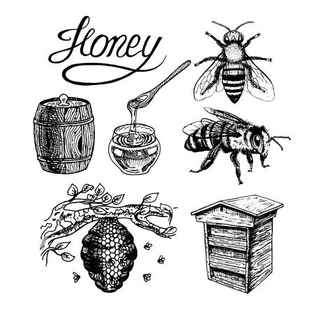 Honey vintage set avec des abeilles de ruche, bocal en verre et à la cuillère, le baril, l'étiquette, le lettrage, branche d'arbre. conception graphique de griffonnage noir et blanc. Vector illustration. Banque d'images - 60780829