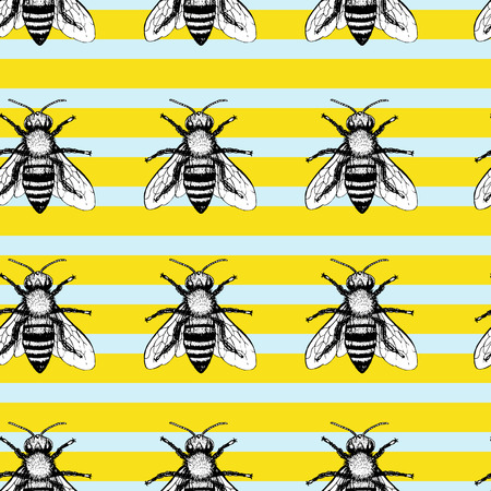 mead: Seamless vector pattern with bees. Hand drawn vintage graphic doodle design. Sketch with animal. Pattern for print on fabric. Vector illustration. Endless background.