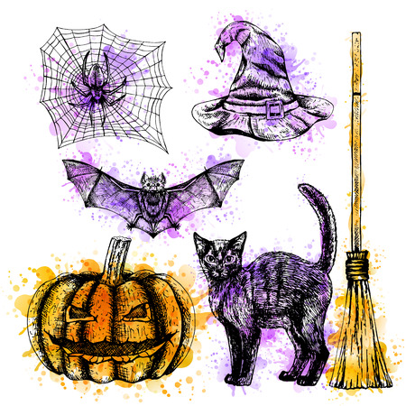 Hand drawn halloween set whith watercolor spots. Sketches of bat spider web witch hat black cat broom and pumpkin. Doodle line graphic design. Vector black and white images. Illustration