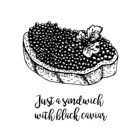 Mano panino disegnato con caviale nero. schizzi retrò isolato. raccolta hypster Vintage. progettazione grafica Doodle linea. panino disegno in bianco e nero con caviale nero. Illustrazione vettoriale.