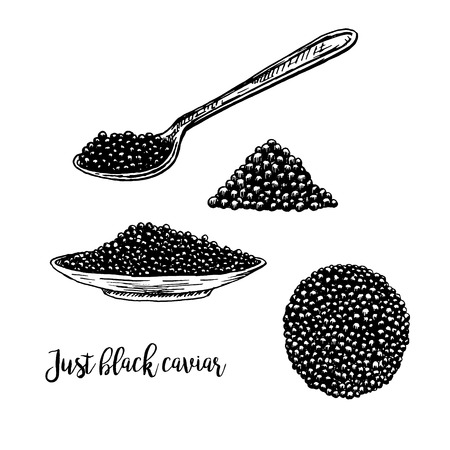 Hand drawn set of plate with black caviar. Retro sketches isolated. Vintage hypster collection. Doodle line graphic design. Black and white drawing black caviar and spoon. Vector illustration. Vectores