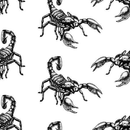 Hand drawn seamless pattern with scorpion. Retro realistic animal background. Doodle line graphic design. Black and white drawing scorpion. Vector illustration. Illustration