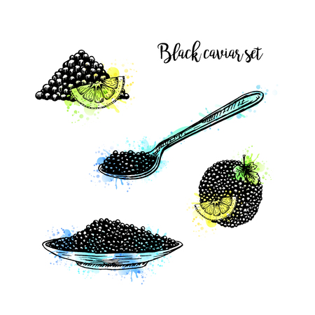 Watercolor Hand drawn set of plate with black caviar. Retro sketches isolated. Vintage collection. Doodle line graphic design. Black and white drawing black caviar and spoon. Vector illustration.