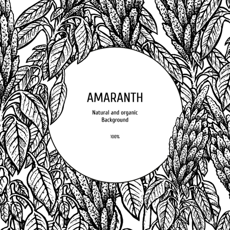 Hand drawn background with amaranth. Ilustracja