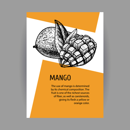 Banners with mango. Black-white design with fruit.