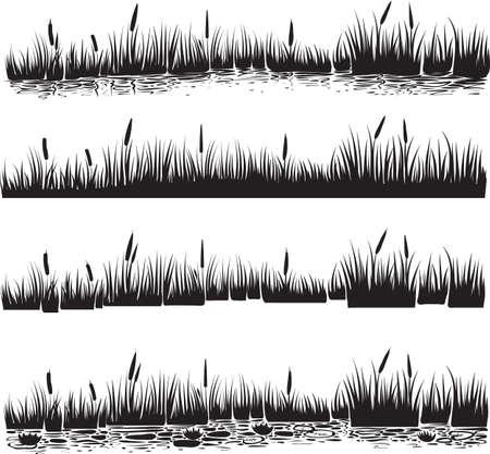 Vektor-Illustration von Schilf, Typha. Szene mit Schilf und Wasserwellen im Teich. Schwarz-Weiß-Grafik-Linie. Silhouette Satz von Schilf. Vektorgrafik