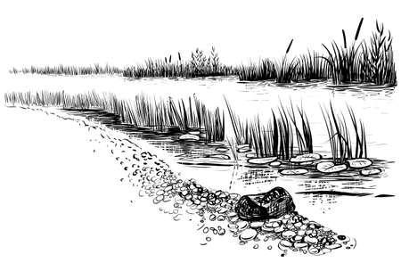 川の風景の黒と白のベクトル イラスト。リードとガマ川の銀行。スケッチ風のスタイル。