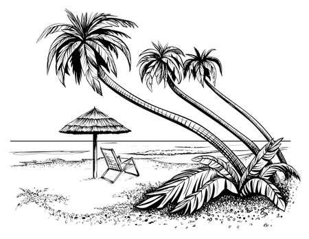 Oceano o spiaggia di mare con palme, schizzo. Illustrazione vettoriale in bianco e nero di riva dell'isola con ombrello e chaise longue. Vista di mare disegnata a mano.