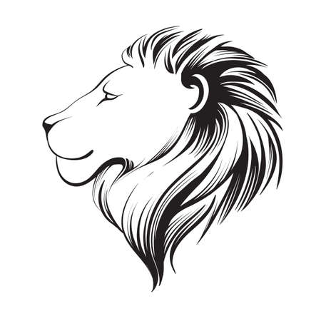 Isolated lions head, stylized line. Linear art, vector illustration, logo. Lion's profile. Stylized face of lion isolated on white background. Illustration