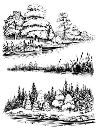 Trees and water reflection, vector illustration set. Landscape with forest, hand drawn sketch.