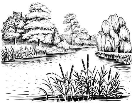 River vector landscape with trees and water plants, hand drawn illustration. Ilustração