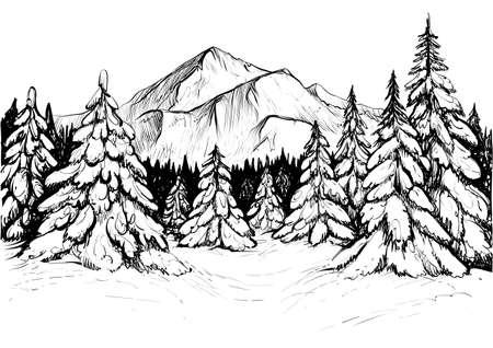 冬は山の林、スケッチします。ベクトルは手下ろしイラスト雪のもみと山のピークです。