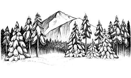 Winter forest in mountains hand drawn illustration. Vectores