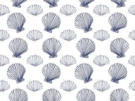 Seashells vector seamless pattern. Hand drawn illustration of scallop with engraved line.