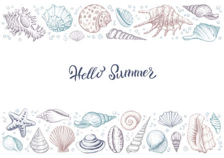 Summer horizontal colorful vintage banner with seashells.