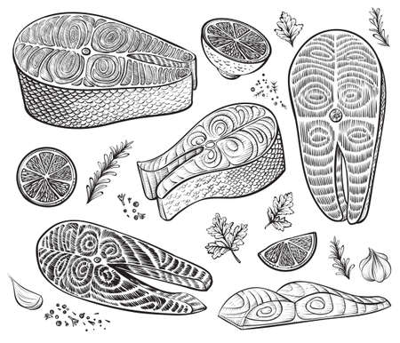 Fish fillet, steak and raw pieces with herbs and lemon. Seafood cooking ingredients. Healthy food hand drawn vector sketch. Illustration