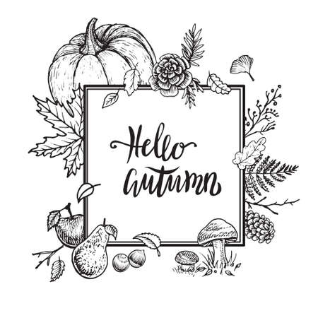 Autumn vector hand drawn design. Vintage card template with leaves, pumpkin, apples, forest and garden plants. Hello Autumn frame. Banque d'images