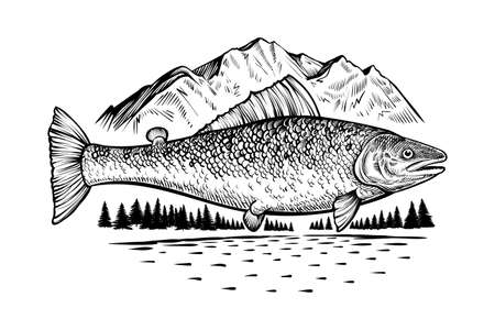 Salmon fish in wild nature. Vector engraving style drawing.