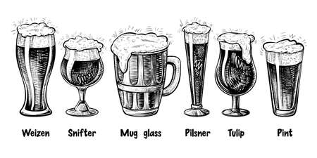 Vector beer glass types, vintage engraving. Foamy beer in different glasses: weizen, pilsner, tulip, snifter, pint, mug.