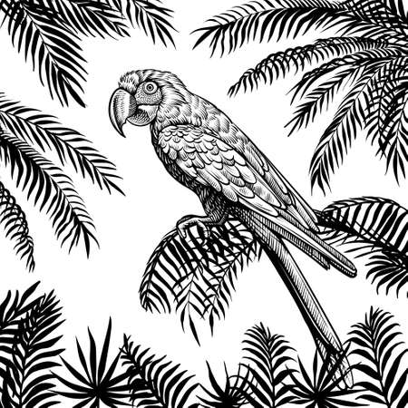Parrot on palm leaf vector background. Tropical summer hand drawn design with macaw .