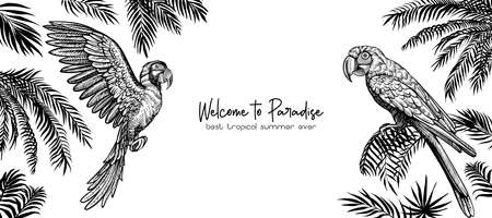 Summer design with parrots and palm leaves. Vector template with illustration for banner or cover.