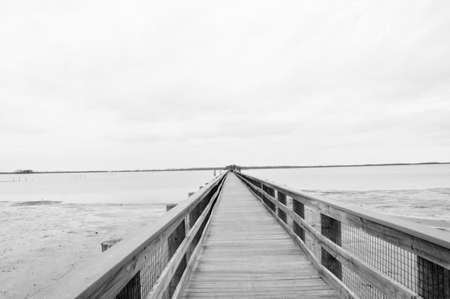 白と黒の人によって作られる桟橋