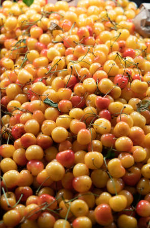 outdoor market selling yellow and pink cherries