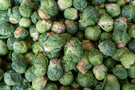 brussel sprouts stacked outside at a farmers market