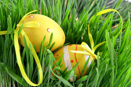 Concept for the for the French April holidays. Easter eggs with node hidden in green grass Banque d'images