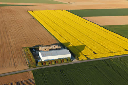 Aerial photograph of a farm in a rapeseed field in Ablis, in Yvelines, ÃŽle-de-France region, France. Banque d'images