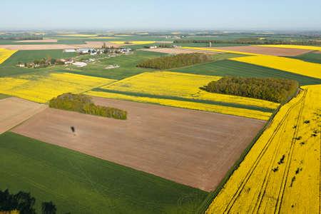 rapeseed fields seen fron the sky in the Eure-et-Loir department, Center-Val de Loire region, France. Banque d'images