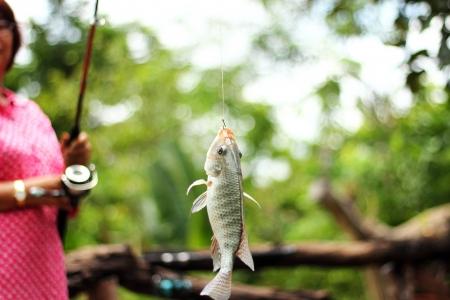 backlash: Angler and  fishing skill