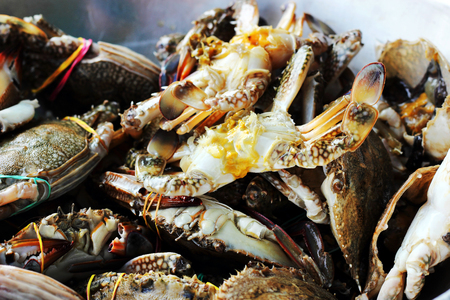 crab pots: Blue swimmer crab  fresh  seafood