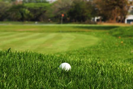 Golf ball in rough grass on fairway   Standard-Bild