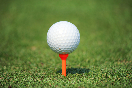 golf ball with tee on green grass  photo