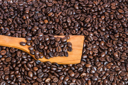coffee beans on wooden spatula photo