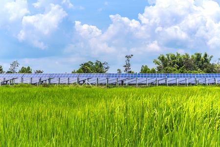 代替エネルギーのための太陽電池パネルの生態学的力