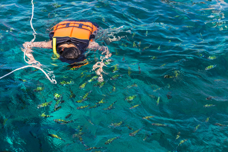 snorkelers: woman snorkeling with life jackets in andaman sea at phi phi islands, Thailand Stock Photo