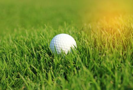 Golf ball in rough grass on fairway