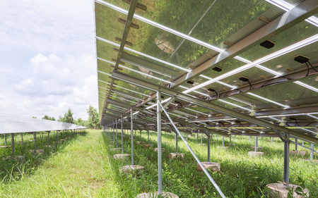 rows array of polycrystalline silicon solar cells or photovoltaic cells in solar power plant turn up skyward absorb the sunlight from the sun