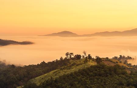 Landschaftsansicht des Sonnenaufgangs mit weißem Nebel am frühen Morgen bedeckt auf der Spitze des Hügels am Aussichtspunkt Yun Lai, Pai, Mae Hong Son, thailand