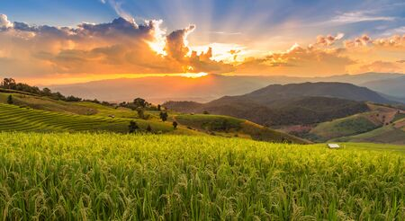 Landscape view sunset time with sun ray at  green terraced plantation  paddy rice field in Pa bong Pieng , Mae Chaem, Chiang Mai, Thailand 免版税图像