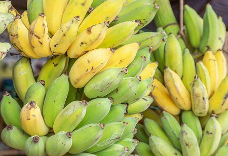 Close up  cultivated bananas or Pisang Awak Bananas or  Kluai  Namwa (Musa sapientum Linn) (Musa ABB CV.Kluai Namwa) in market 免版税图像