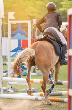 action equestrian rider horse jumping over hurdle obstacle during dressage test competition in race course 免版税图像